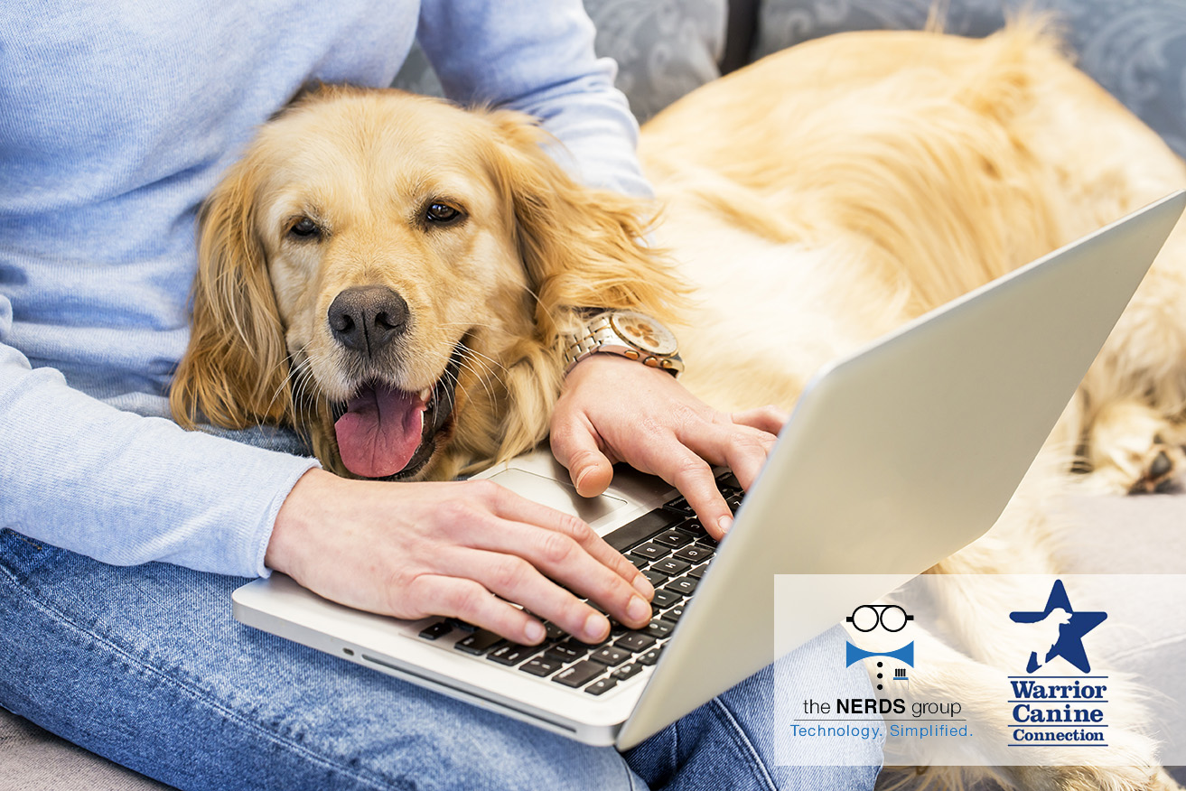 NERDS group provides free IT service for Warrior Canine Connection